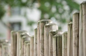 Fence posts together to make a fence